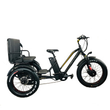 24-20inch Big Power Customized OEM USA 48V 21ah 750W Bafang Front Motor Cheaper Electric Fat Tire Tricycle