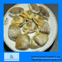 Surf clam en coquille