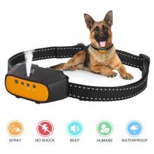 Collier anti-aboiement rechargeable pour chien