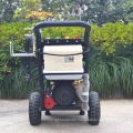 BISON China Electric High Pressure Car Washer, Portable Car Washer