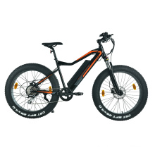 XY-CHAMPION hybrid 29 inch electric bike