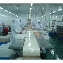 poultry processing line of belt conveyor
