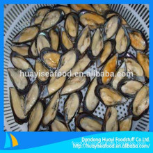 mussels supplier supply all sizes half shell mussel