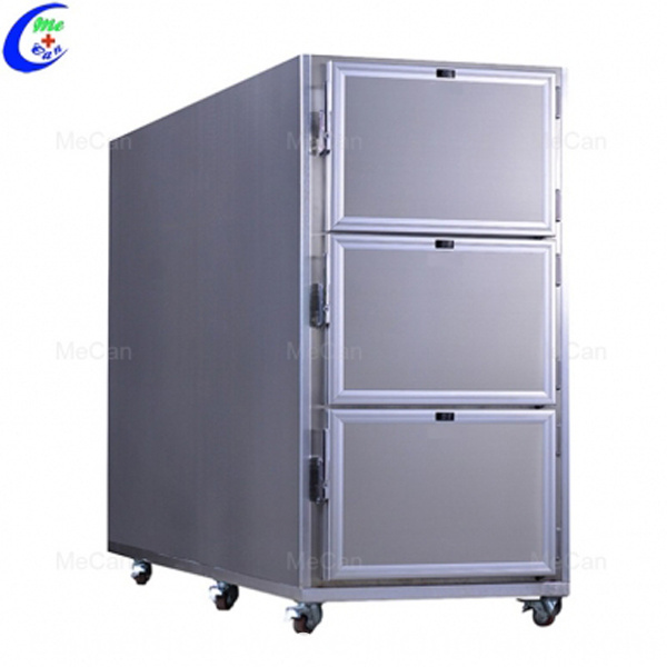 Stainless Steel 6 Bodies Freezer