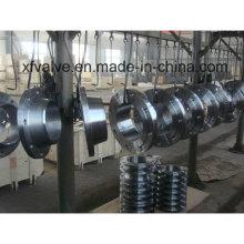 Bride de soudure forgée en acier au carbone ou en acier inoxydable