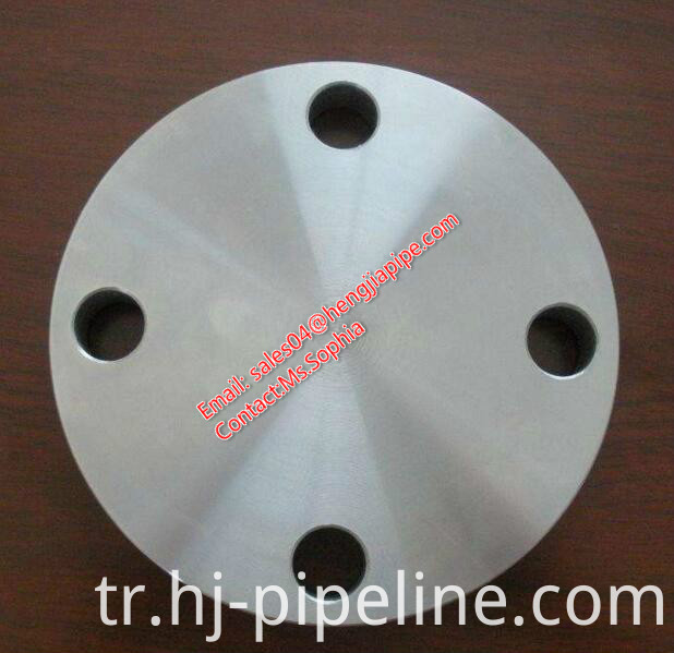 forged raised face blind flange