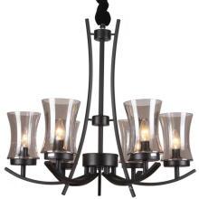 Lámpara de hierro negro lámpara de iluminación interior (SL2246-6)
