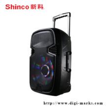 Professioneller tragbarer Lautsprecher mit drahtlosem Bluetooth Lautsprecher FM