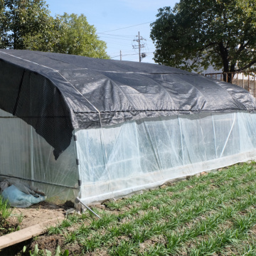 Skyplant Hot Sale Agriculture Plastic Film Greenhouse