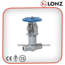 ANSI Válvula de pressão de alta pressão Válvula de aço forjado