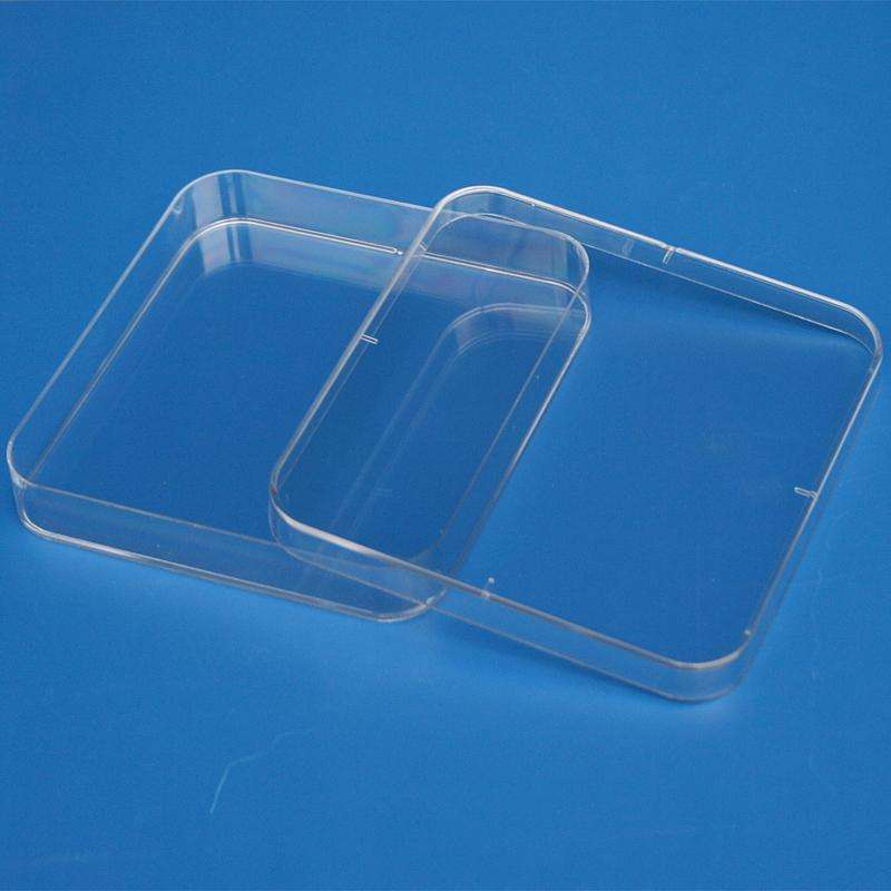 Square disposable plastic petri dishes