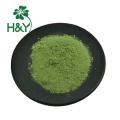Wheat germ powder Juice wheat grass powder