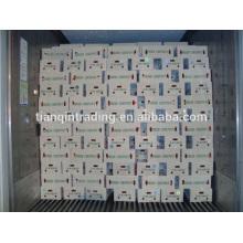 chinesische Kastanie 10kg Karton Afrika