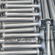 Stainless Steel, Carbon Steel, Lifting Anchor/ Erection Anchor for Construction Hardware (5T)