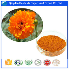 GMP factory supply Natrual Marigold Flower Extract powder lutein