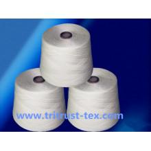 (2 / 30s) filé à coudre de fil de polyester