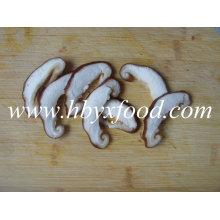 Chinese Dried Champignon Mushroom Shiitake Slice
