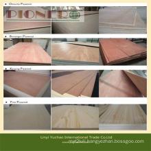 Okoume, Bintangor, Pine, etc Commercial Plywood with Best Price