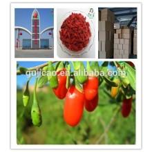 Heißer Verkauf der EU getrocknete goji Beeren / Qualität Goji Berry Price / GMP zugelassener Hersteller wolfberry