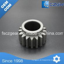 High Precision Customized Getriebe Getriebe Drum Gear für verschiedene Maschinen