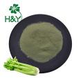 Custom celery capsules wild celery herb extract