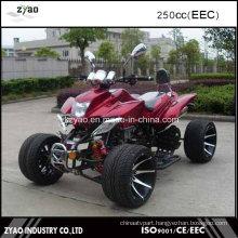 Wholesale ATV China EEC Quad for Sale 3 Wheels