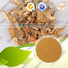 Weißer Maulbeerbaum-Wurzel-Extrakt