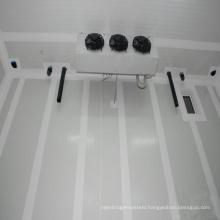 Low Temperature Chicken Cold Room Freezer For Sale