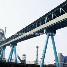 Chemical Industry Conveyor / Mine Conveyor / Mining Conveyor