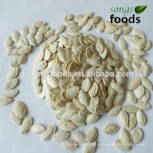 Compre New Crop shineskin pumpkin Seeds
