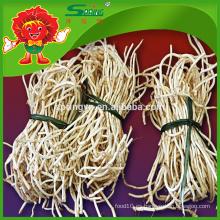 Alta calidad Herba Houttuyniae raíz con precio competitivo