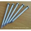 Galvanized Concrete Nails Prix