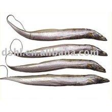 Pescado de cinta congelada, hardtails congelados, pescado de cinturón congelado