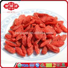 FDA registrado orgánico secado wolfberry Ningxia secado wolfberry al por mayor para bajar la presión arterial