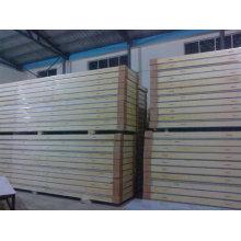 Kaltlagerraum isolierte Panel / PU Sandwich Panel