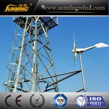 CE Approved Wind Turbine Generator (SKY 1200W)