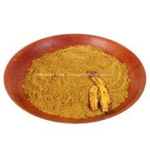 Coptis Rohstoffpulver Berberinpulver Coptis Pulver