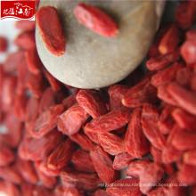 Горячая продажа оптом зерна-ягоды годжи