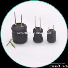 DR0507 DIP Type Vertical Fixed Inductor WIith 2 Pins
