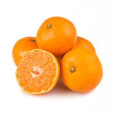 Mandarin Small Packing In Plastic Box Baby Mandarin Orange