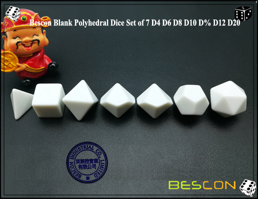 Blank Polyhedral Dice (2)