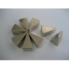 Permanent Rare Earth Magnets, Triangle Shape