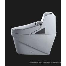 Meilleure qualité de toilette intelligente (TZ341M / L)