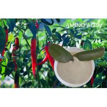 Plant Source Amino Acid Soluble Powder Amino Acid