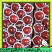 China Tianshui huaniu Apfel