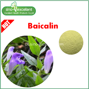 Extrato Natural Baical Skullcap Baicalin