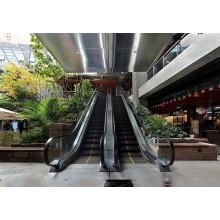 Escalera mecánica de pasajeros de venta caliente con nuevo diseño para la alameda