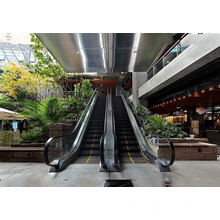 Hot Sale Passenger Escalator with New Design for Mall