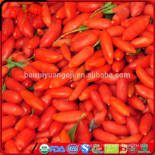 Calorias em bagas de goji secas benefícios de bagas de goji secas secas goji berries trader de joe
