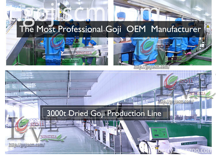 Healthy Certificate Goji Berry production line